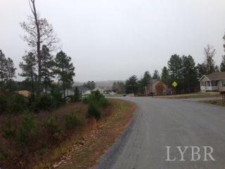 Land - Altavista, VA (photo 3)