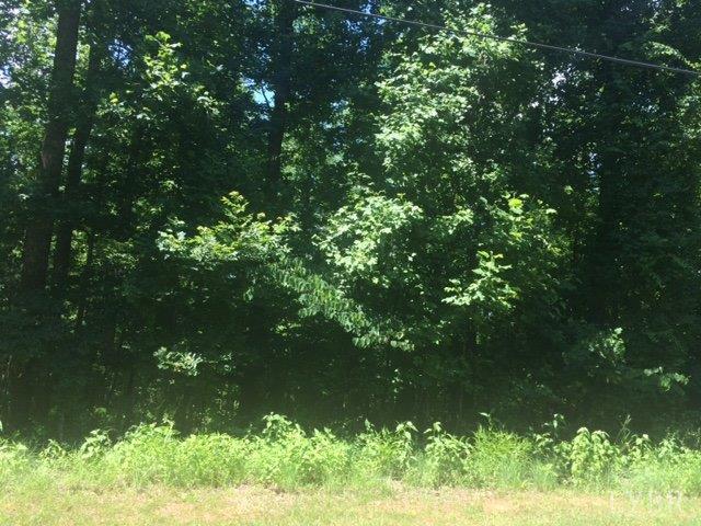 Land - Amherst, VA (photo 3)