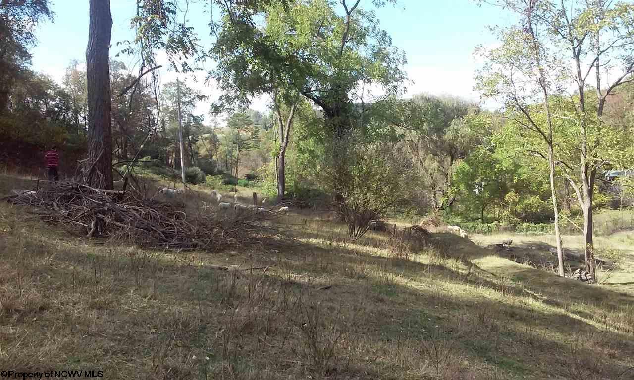 Residential Land - Fairmont, WV (photo 3)