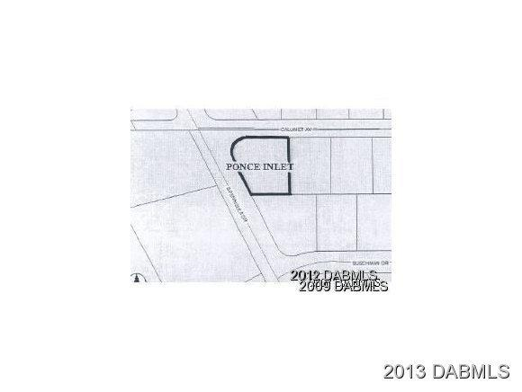 Single Family Lot - Ponce Inlet, FL (photo 1)