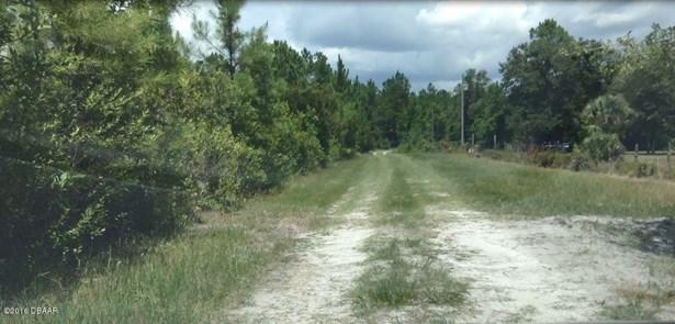 Ranch-Timberland - Pierson, FL (photo 1)