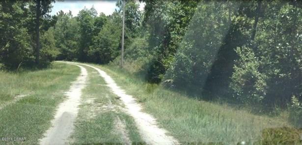 Ranch-Timberland - Pierson, FL (photo 3)