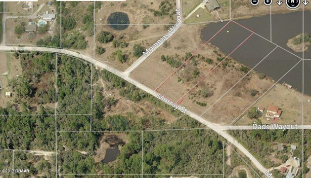 Single Family Lot - Osteen, FL (photo 2)