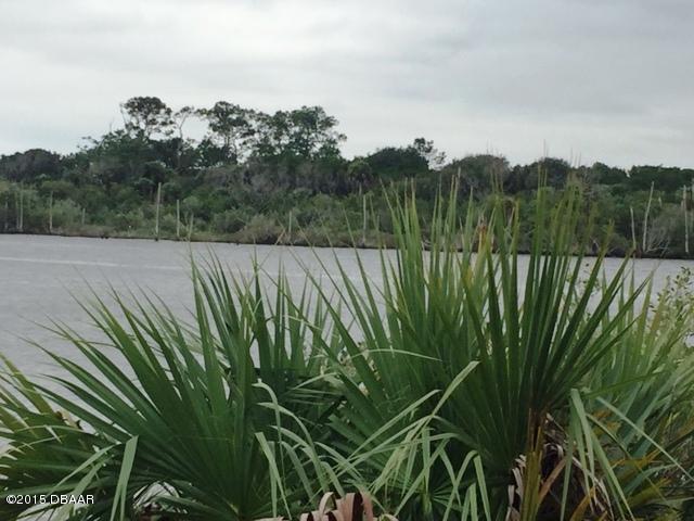 Single Family Lot - Ormond Beach, FL (photo 5)