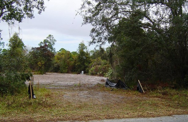 Single Family Lot - Orange City, FL (photo 1)