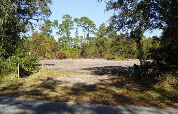 Single Family Lot - Orange City, FL (photo 3)