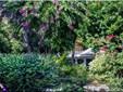 11500 Gore Ln, Captiva, FL - USA (photo 1)