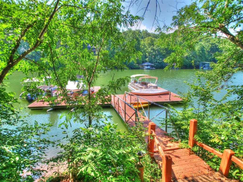 Lake Front,Single Family,Waterfront Access - Greenback, TN (photo 1)