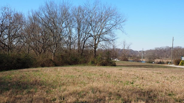 Commercial,Waterfront Access - Sevierville, TN (photo 4)