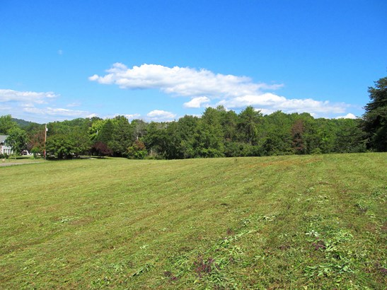 Farm,Recreational,Rural,Single Family,Waterfront Access - Andersonville, TN (photo 4)