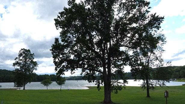 Lake Front,Single Family,Waterfront Access - Lafollette, TN (photo 3)