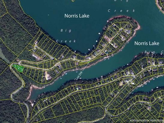 Lake Front,Single Family,Waterfront Access - Jacksboro, TN (photo 2)