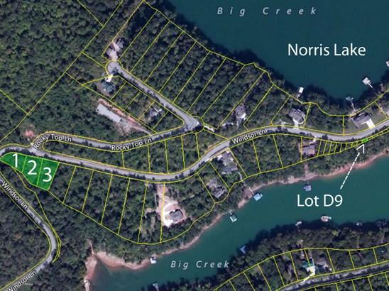 Lake Front,Single Family,Waterfront Access - Jacksboro, TN (photo 4)