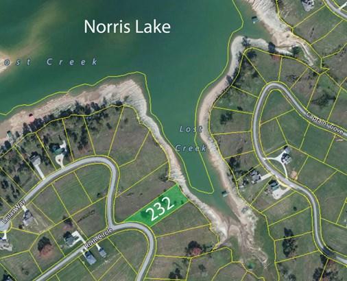 Lake Front,Single Family,Waterfront Access - Sharps Chapel, TN (photo 4)
