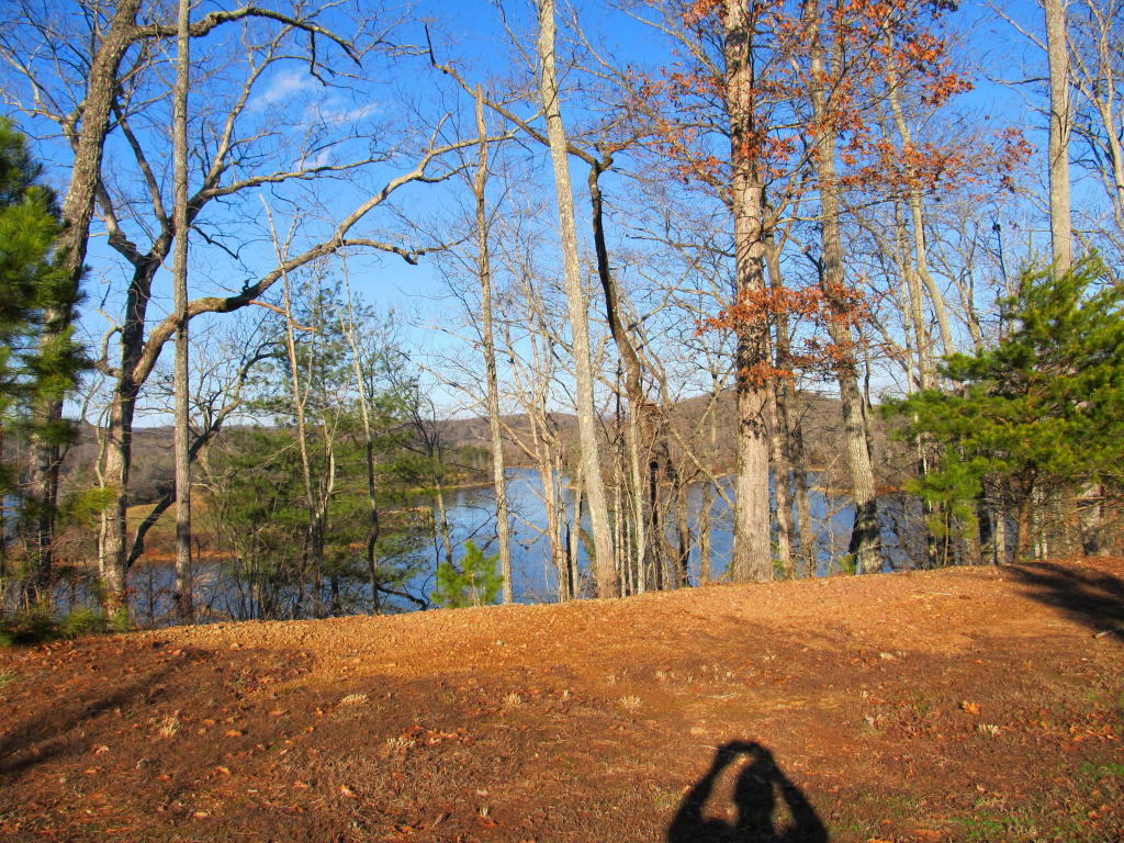 Lake Front,Recreational,Single Family,Waterfront Access - Rockwood, TN (photo 1)