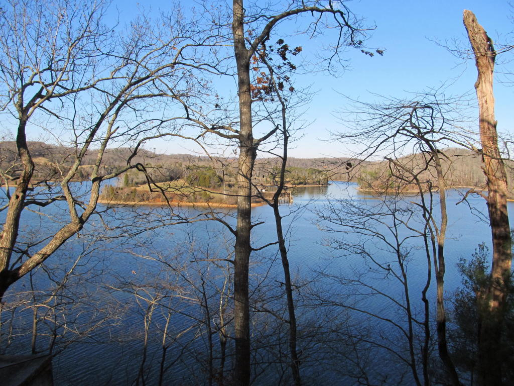 Lake Front,Recreational,Single Family,Waterfront Access - Rockwood, TN (photo 5)
