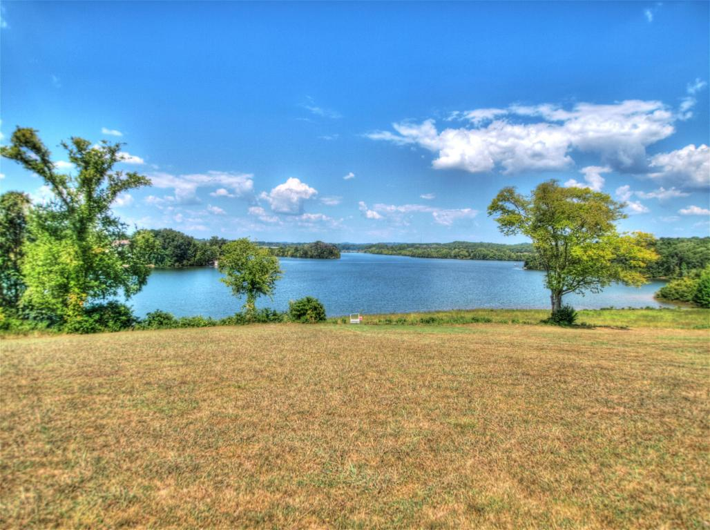 Lake Front,Recreational,Single Family,Waterfront Access - Vonore, TN (photo 4)