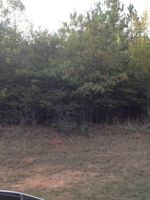Residential Building Lot - Gray, GA (photo 3)
