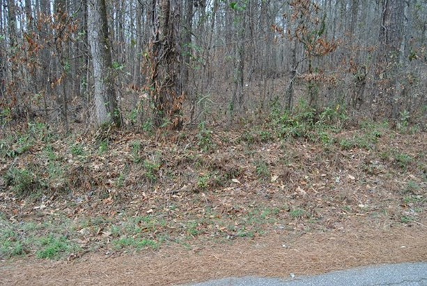 Residential Building Lot - Jackson, GA (photo 4)