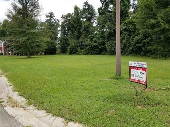 Residential Lot - Warner Robins, GA (photo 3)