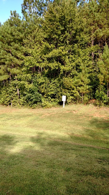 Residential Building Lot - Forsyth, GA (photo 2)