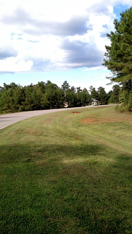 Residential Building Lot - Forsyth, GA (photo 5)