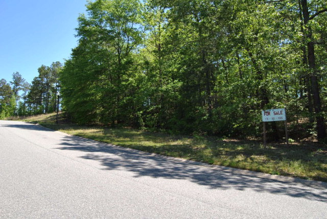 Residential Building Lot - Macon, GA (photo 2)