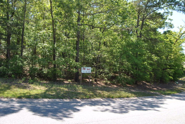 Residential Building Lot - Macon, GA (photo 3)