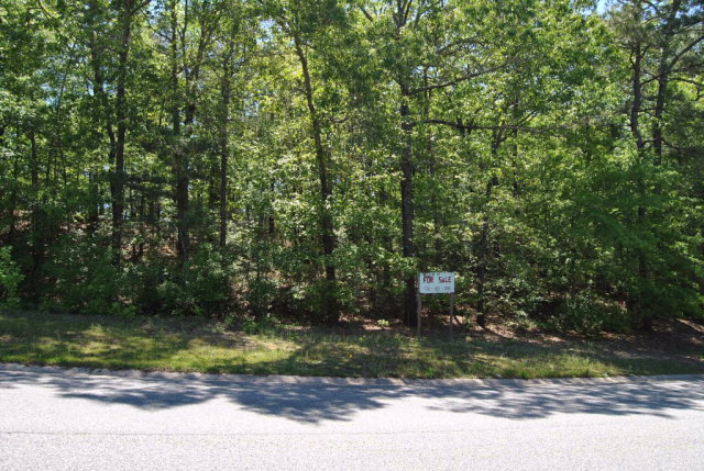 Residential Building Lot - Macon, GA (photo 4)
