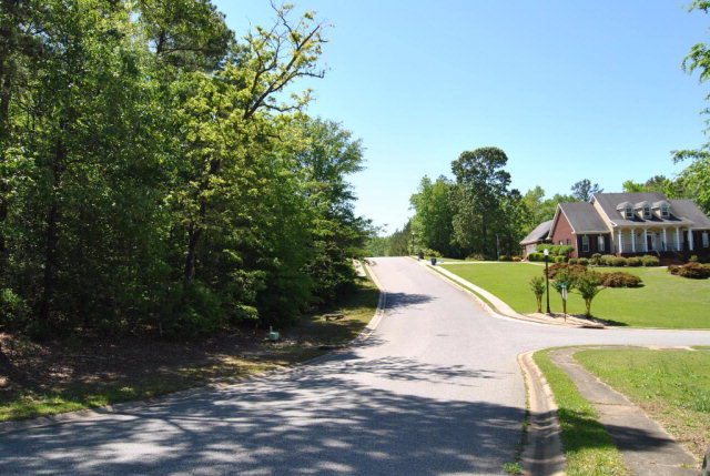 Residential Building Lot - Macon, GA (photo 5)