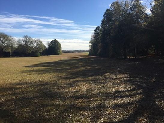Land/Farm - Barnesville, GA (photo 2)