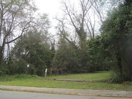 Residential Building Lot - Macon, GA (photo 1)