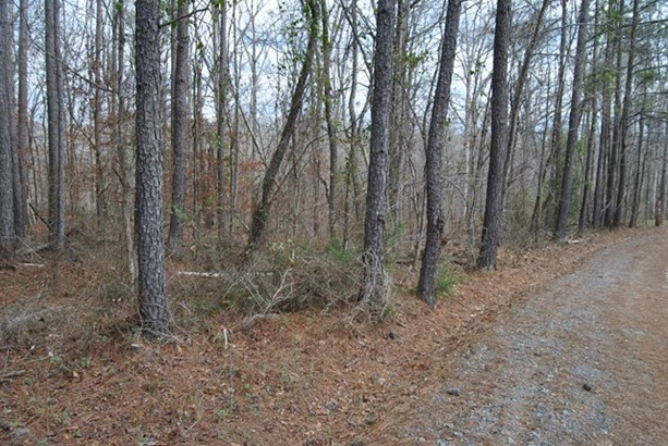 Residential Building Lot - Jackson, GA (photo 2)