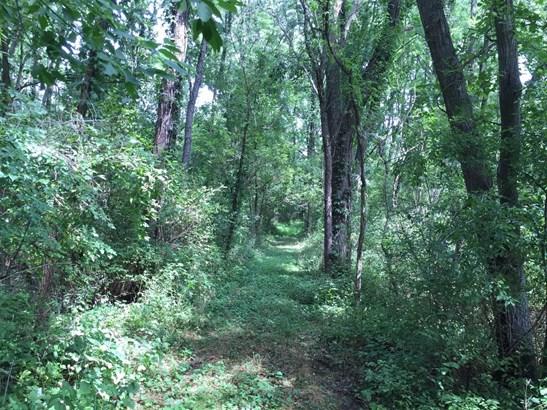 0 Glenn Road, Grass Lake, MI - USA (photo 5)