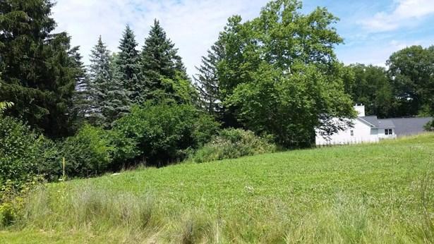 1001 Aberdeen Drive, Ann Arbor, MI - USA (photo 5)