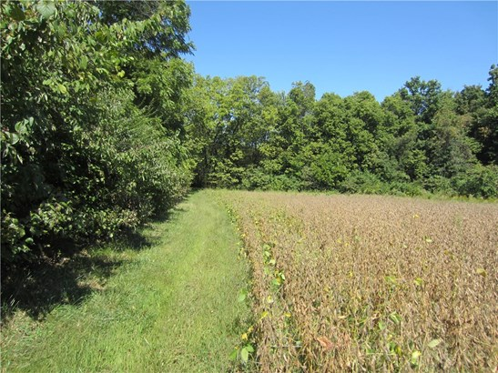 7769 East Hadley Road, Camby, IN - USA (photo 1)