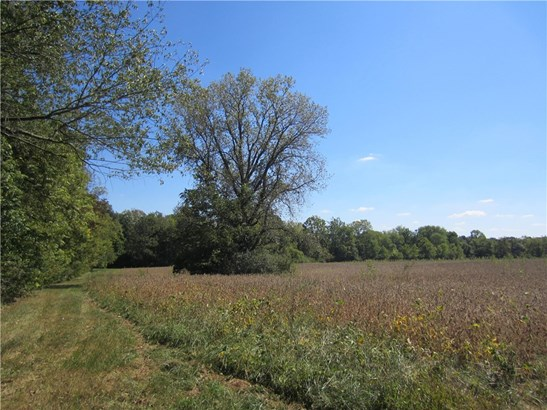 7769 East Hadley Road, Camby, IN - USA (photo 4)