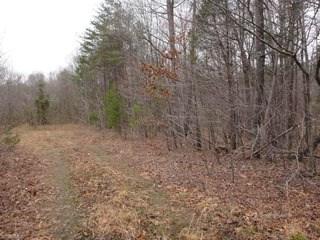 0 Harvest Road, Reidsville, NC - USA (photo 2)