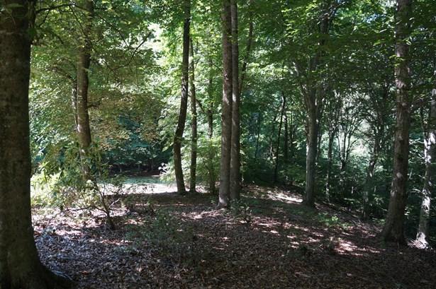 4010 River Branch Lane, Pfafftown, NC - USA (photo 2)