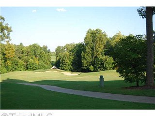 4103 Tansley, Greensboro, NC - USA (photo 3)