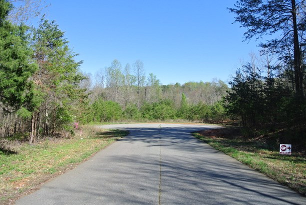 Lot 115 Emmas Way, East Bend, NC - USA (photo 3)