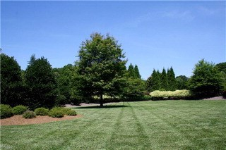 8406 Oakchester Court, Oak Ridge, NC - USA (photo 5)