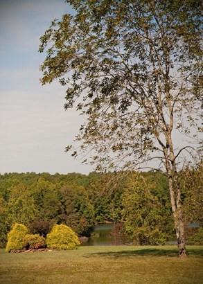6049 Marion Point Court, Belews Creek, NC - USA (photo 1)