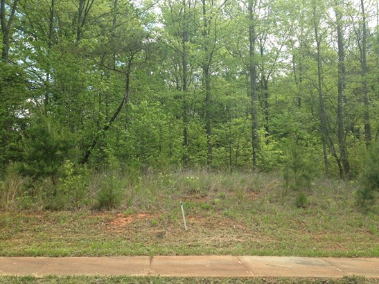 158 Nellwood Court, Mocksville, NC - USA (photo 4)
