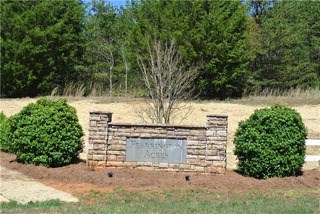Lot 201 Emmas Way, East Bend, NC - USA (photo 1)