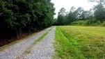 5545 Ne E And R Rogers Avenue , Winnabow, NC - USA (photo 1)