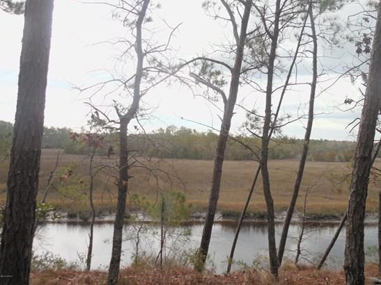 38 & Pt 39 Lightwood Sw Lane , Shallotte, NC - USA (photo 2)