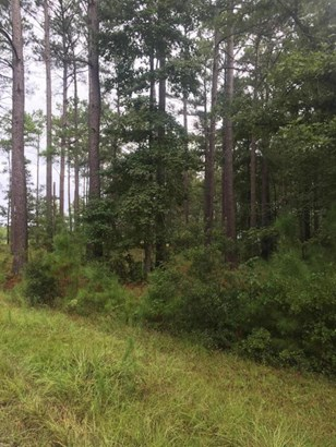 Lot 21 Sweetbrier Drive , Burgaw, NC - USA (photo 1)