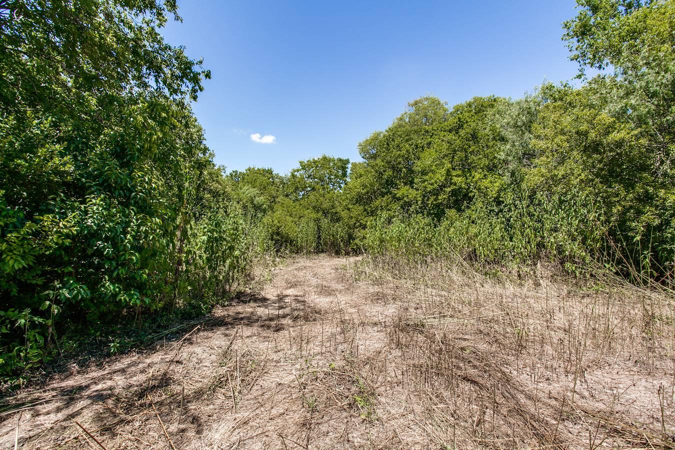 1725  Oakhill Rd , San Antonio, TX - USA (photo 5)