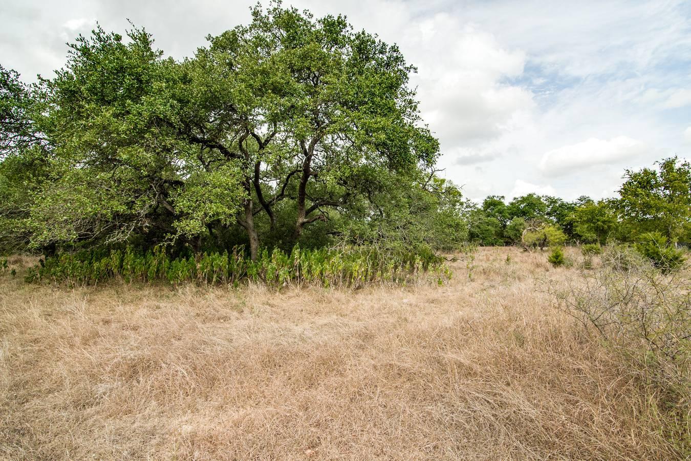 27723   Bogen Rd , New Braunfels, TX - USA (photo 2)